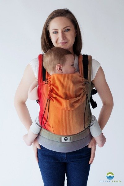 f36ba99d4ef Baby carrier Little Frog - Ammolite in Love 2 Click to zoom ...