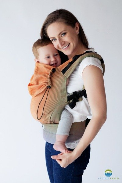 a593fc284ec ... Baby carrier Little Frog - Ammolite in Love 2 Click to zoom